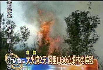大火燒2天 阿里山30公頃林地燒毀
