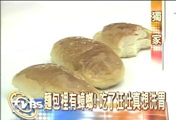 〈獨家〉麵包裡有蟑螂! 吃了狂吐真想洗胃