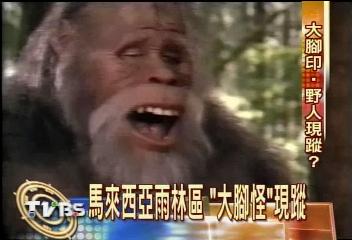 馬來西亞雨林區 「大腳怪」現蹤