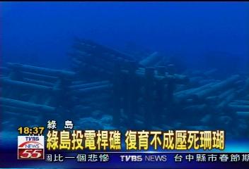 綠島投電桿礁 復育不成壓死珊瑚