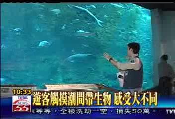 一窺台灣海洋面貌 海生館真實重現