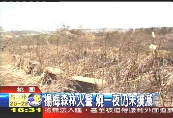 楊梅森林火警 桃園滅新竹仍燒