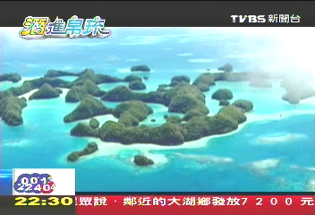 【「潛」進帛琉】上萬水母壯觀奇景 靠水母救地球