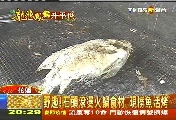 野趣!石頭滾燙火鍋食材 現撈魚活烤