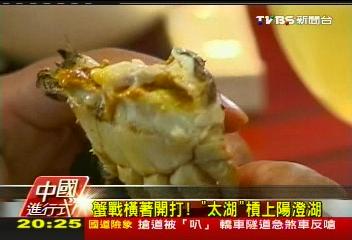 【中國進行式】「讓利」7500萬!陽澄湖蟹苗技術 輸台