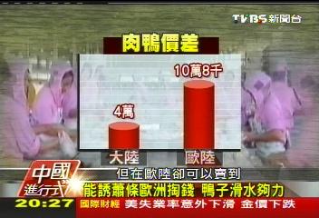 【中國進行式】單日15萬隻「飛」歐陸 拚外銷使勁