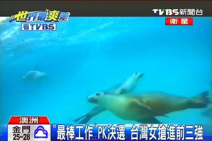 「最棒工作」PK決選 台灣女搶進前三強