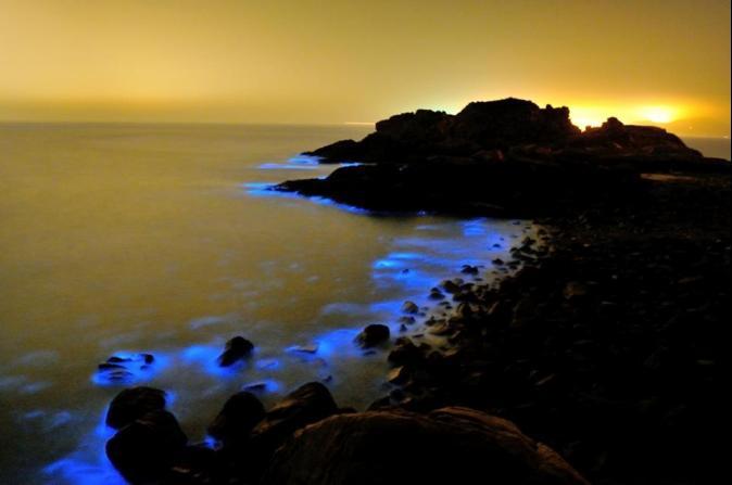 海面上微微發光!世界級美景 馬祖藍眼淚現蹤