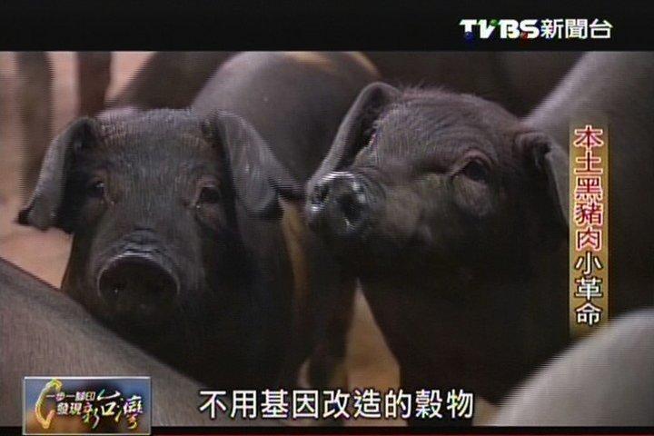 【一步一腳印】本土黑豬肉小革命