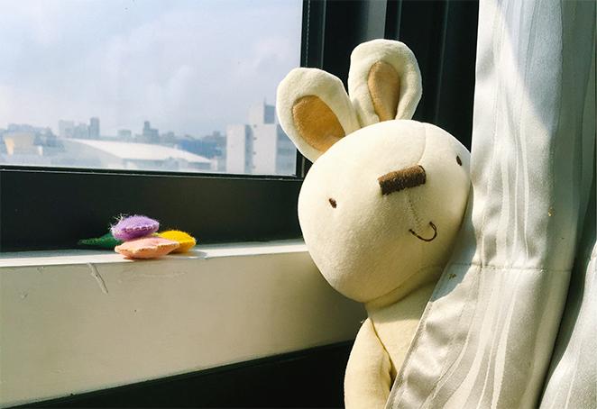 獨/出門前的親子戰爭 他們靠一隻兔寶寶搞定了