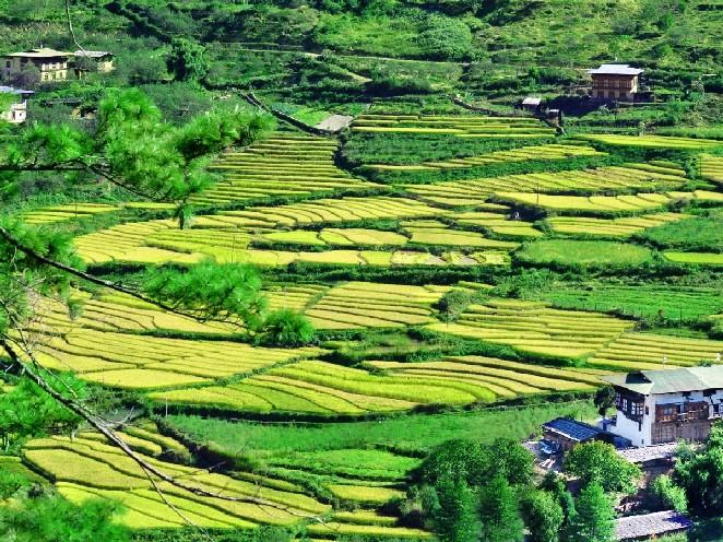 到不丹尋人間最後淨土 當全球最快樂的人