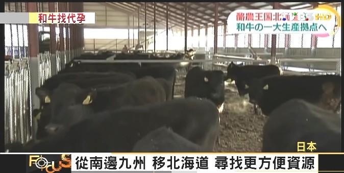 FOCUS/嫩滑噴香!饕客吞和牛肉 百公克650圓