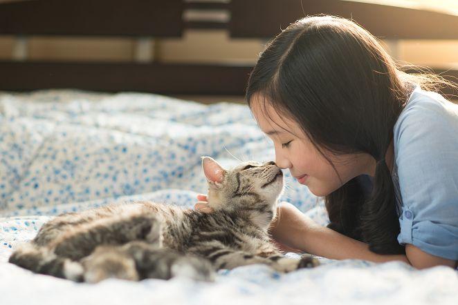 FOCUS/日本愛貓族不容小看 2/22日:貓之日